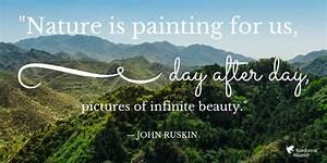 Rainforest Alli... Amazon Jungle Quotes