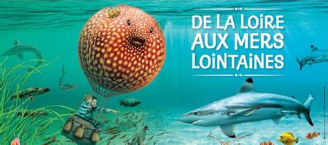 grand aquarium de touraine animations d et 233 2015 val de loire