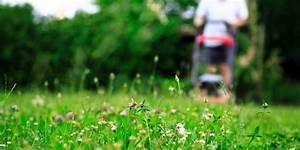 Muss Der Rasen Nach Dem Düngen Gewässert Werden : sieben tipps f r saftig gr nen rasen ~ Yasmunasinghe.com Haus und Dekorationen
