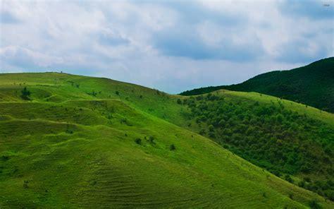 Green Hills Wallpaper Wallpapersafari