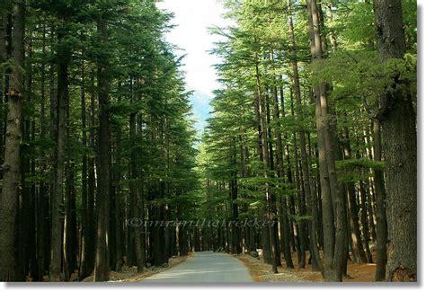 kalam swat valley pakistan  peaceful  swat