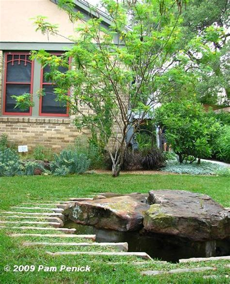 feature tree for front yard gardens on tour 2009 academy drive garden digging