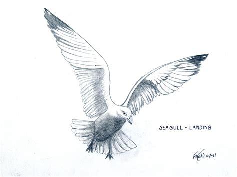 Pin Von Frederic Kohli Auf Birds And Animals Paintings