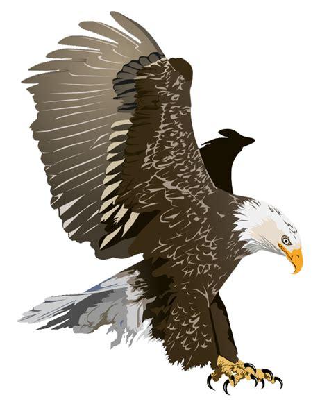 Bald Eagle Clip Free Eagle Clip Pictures Clipartix