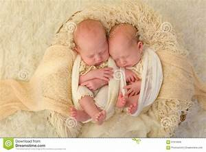 Identical Newborn Twins Stock Photo - Image: 67919035