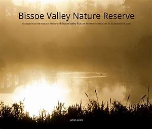 Bissoe Valley Nature Reserve: A study into the natural ...