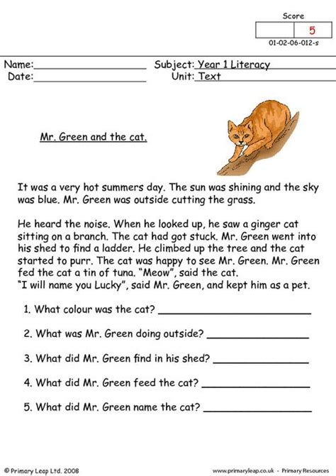 literacy  girl  hated wearing shoes worksheet