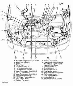Wiring Diagram Toyota Camry 2003