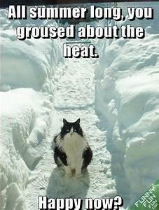 Grey Horse Matt... Fun Seasonal Quotes