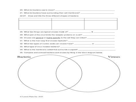 worksheets virus and bacteria worksheet opossumsoft
