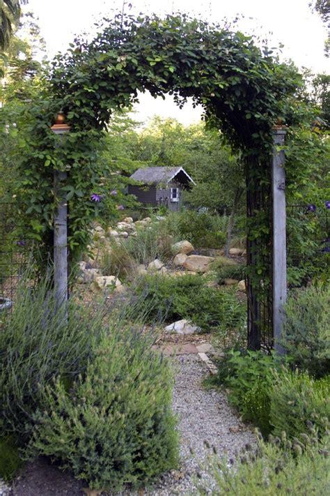 creating a secret garden secret garden tips for creating backyard privacy home garden