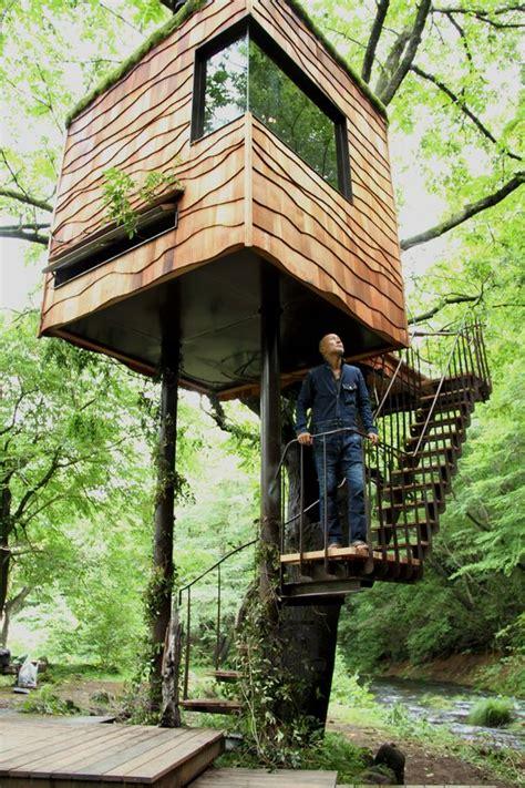 chalet dans les arbres dans les arbres tree house cabane perchee cabanes chalet en bois et cabane jardin