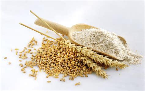 wheat flour is whole wheat lower in calories than white flour