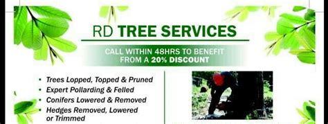 tree services york  reviews tree surgeon freeindex