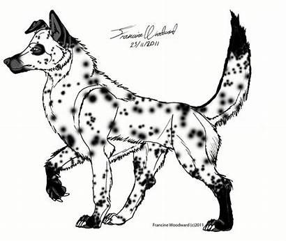 Wolf Mix Dalmatian Rash Deviantart