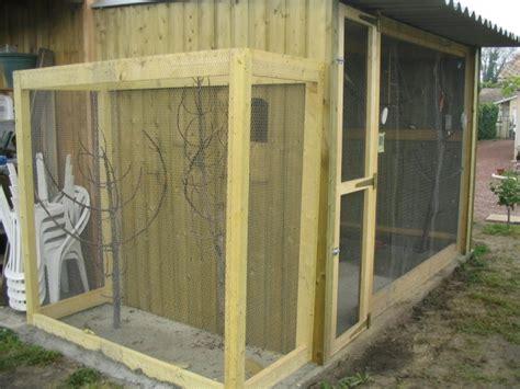 voliere exterieur fait maison construire une voliere exterieur en bois sedgu