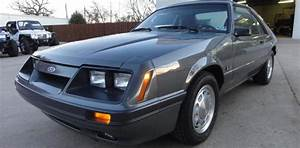 Collection Of 9 Fox-body Mustangs Up For Sale - StangTV