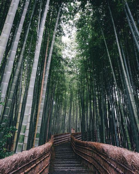 japon photographies pleines de charme sur la vie quotidienne