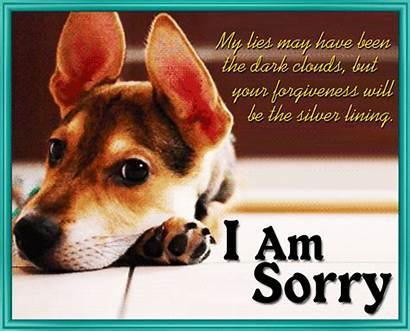 Sorry Forgiveness Card Ecard Cards Ecards