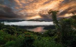 Landscape, Nature, Clouds, Sunset, Lake, Mist, Forest