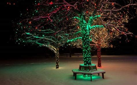 Trees, Lights, Christmas, Winter, Snow, Park Wallpapers Hd
