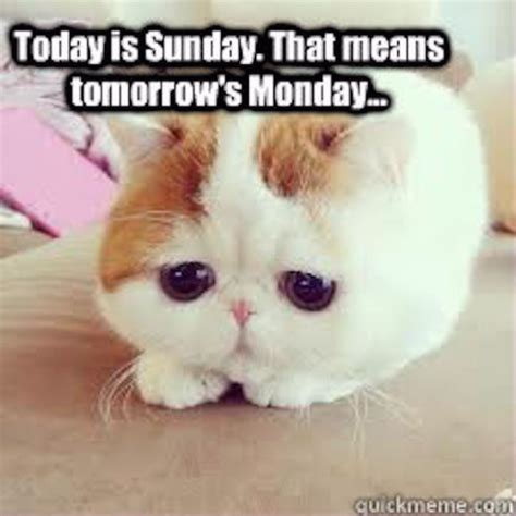 tomorrow  monday pictures   images