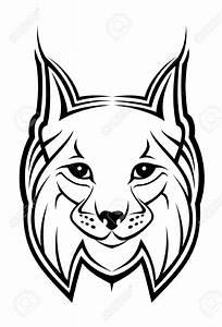 Drawn Lynx Linx Pencil And In Color Drawn Lynx Linx