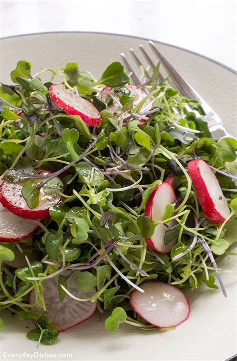 microgreens salad recipe  lime vinaigrette
