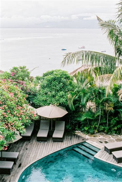 25 Best Ideas About Tropical Pool On Pinterest Dream