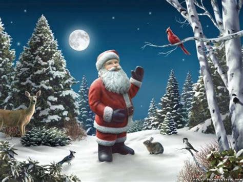 animals zoo park christmas tree santa claus wallpapers for desktop free backgrounds