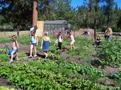 Garden School by Community Gardens Klamath And Lake Counties Food Guide