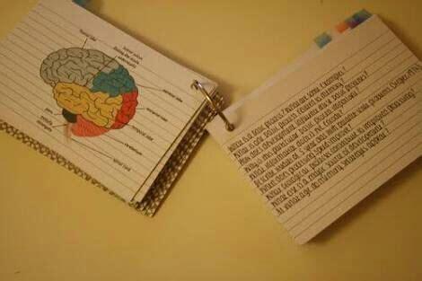 Como Estudiar Con Flash Cards 📑  •studyblr• Amino
