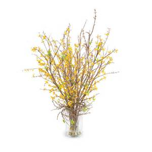 forsythia flower arrangements forsythia arrangement new growth designs