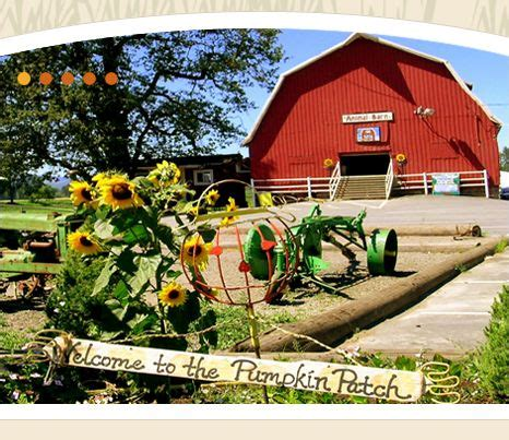Best Pumpkin Patch Sauvie Island by 34 Best Images About Favorite Places Amp Spaces On Pinterest