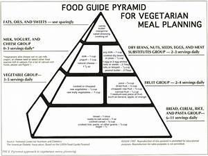 Healthy Eating Tips For Vegetarians