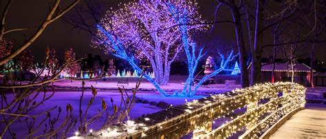 5 places to see christmas lights in colorado front range