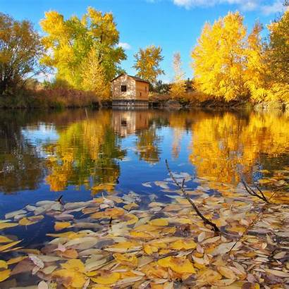 Fall Yellowstone Colors Autumn Reveling Further Ann