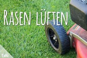 Rasen Vertikutieren Zeitpunkt : rasen l ften anleitung hinweise zu ger ten zeitpunkt ~ Orissabook.com Haus und Dekorationen