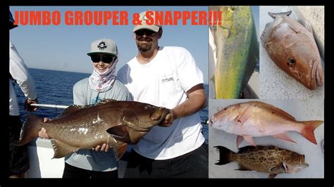 snapper grouper deep sea fishing florida