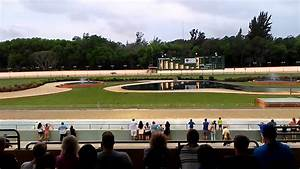 dog track naples florida march 2016 youtube With naples dog track