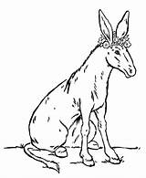 Coloring Pages Donkey Animal Flowers Farm Animals Printable Sheet Scorpion Popular Honkingdonkey sketch template