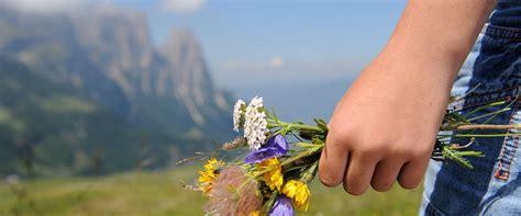 Urlaub Mit Kindern In S 252 Dtirol Der Perfekte Familienurlaub Auf Der Seiser Alm Gt Gt Gt