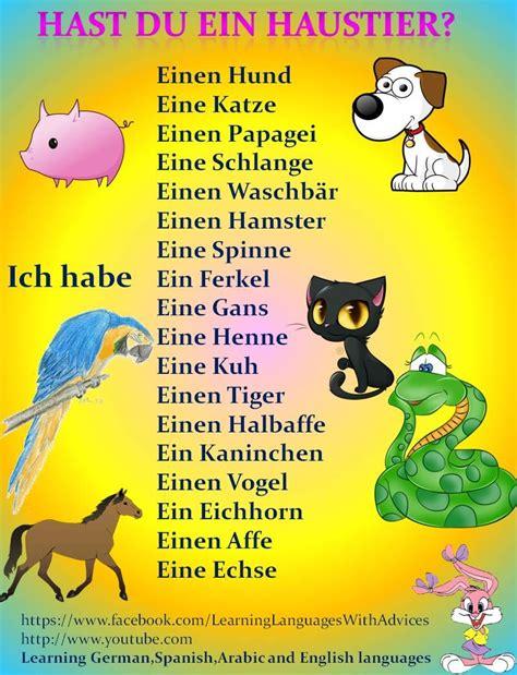 Hast Du Ein Haustier? Deutsch