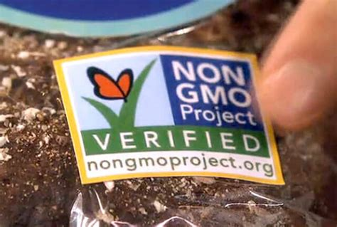 cuisine non agenc馥 non gmo project label doesn t product is non gmo canadian food inspection agency says genetic literacy project