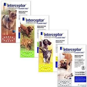cat heartworm medicine interceptor for dogs cats heartworm medicine 1800petmeds