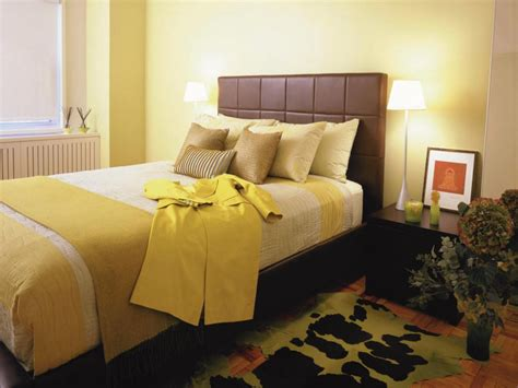 Color Combination For Wall Bedroom  Home Combo