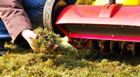 Wann Soll Den Rasen Vertikutieren by Wann Den Rasen Vertikutieren Und D 252 Ngen Das Gartenmagazin