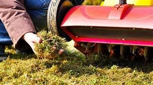Rasen Vertikutieren Wann : wann den rasen vertikutieren und d ngen das gartenmagazin ~ Eleganceandgraceweddings.com Haus und Dekorationen