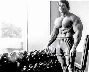 Fitness Reviews And Images  Arnold U0026 39 S Blueprint For Mammoth