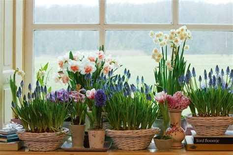 Spring Decorating Ideas -refresh Your Home With Spring